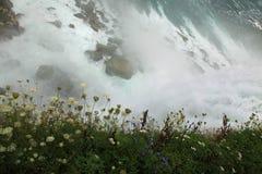 падает положение парка niagara Стоковые Изображения RF