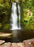 падает mclean Новая Зеландия Стоковые Фотографии RF