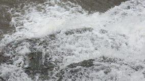 Падать вниз водопад весны видеоматериал