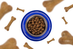 Падать собачьей еды Стоковое фото RF