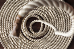 Падая веревочка моря Стоковое фото RF