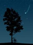 падая звезда Стоковое Изображение
