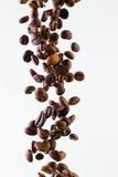 Падая зерна зажаренного в духовке кофе на белой предпосылке Стоковое фото RF