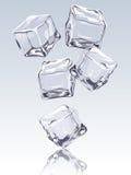 Падая кубик льда Стоковая Фотография