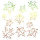 падая клен листьев Иллюстрация вектора с планами градиента Стоковые Фотографии RF