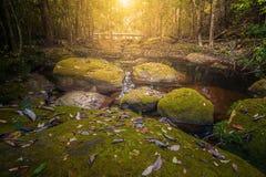 Падение воды в гору Стоковая Фотография