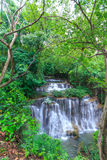 Падение воды в глубокий лес Таиланд стоковые изображения