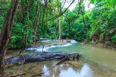 Падение воды в глубокий лес Таиланд стоковое изображение