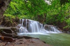 Падение воды в глубокий лес Таиланд стоковое фото rf
