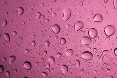 Падение воды на розовой предпосылке Стоковые Изображения RF
