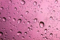 Падение воды на розовой предпосылке Стоковое фото RF
