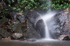 Падение воды природы в дождевой лес стоковое фото