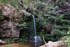 Падение воды природы в дождевой лес стоковые изображения rf
