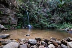 Падение воды природы в дождевой лес стоковое изображение