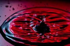 Падение воды Стоковая Фотография RF