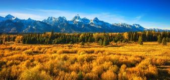 Падение в грандиозный национальный парк Tetons стоковая фотография rf