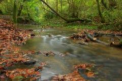 Падение и вода Стоковые Изображения