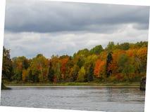 Падение на берег озера стоковая фотография rf