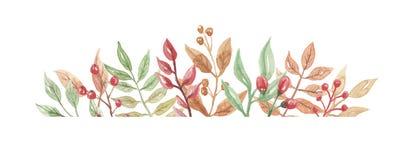 Падение осени заголовка рамки ягод акварели выходит лист цветков Стоковое Изображение