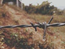 Падение провода и воды колючки Стоковое Фото