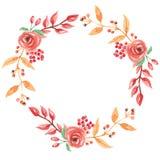 Падение рамки гирлянды венка осени акварели красное выходит лист ягоды цветков круга Стоковые Изображения RF