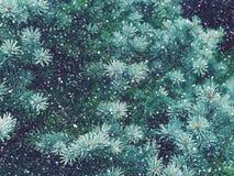Падение снега в волшебство рождества леса зимы Стоковое Фото