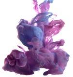 Падение цвета Стоковое Фото