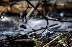 Падение льда Стоковая Фотография RF