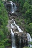 Падения белой воды Стоковая Фотография