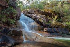 Падения ванны дам, буйвол держателя, Австралия Стоковая Фотография