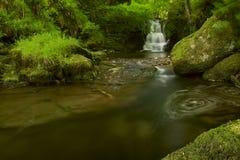 Падения водоворота Стоковое фото RF