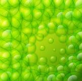 Падения воды на зеленой предпосылке. Стоковая Фотография