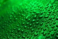 Падения воды на зеленых лист банана Стоковые Изображения RF