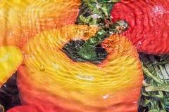 Падения воды падают на изображение, которое покрашенный перец стоковые фотографии rf