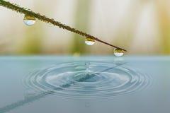 Падения воды с тенью отражения в воде Стоковая Фотография