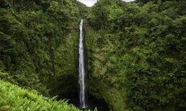Падения Гаваи Akaka стоковое изображение rf