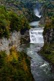 Падения и каньон середины на парке штата Letchworth - водопад и цвета падения/осени - Нью-Йорк Стоковые Фотографии RF