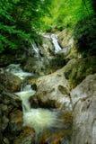 Падения на западную вилку реки голубя Стоковое Изображение RF