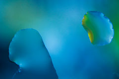 Падения открытого моря - макрос Стоковое Фото