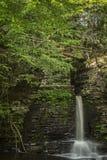 Падения перескакивания оленей, Пенсильвания Стоковое фото RF