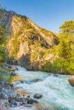 Падения реки реветь, национальный парк королей Каньона стоковые изображения
