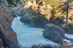 Падения реки реветь, национальный парк королей Каньона стоковое изображение