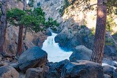 Падения реки реветь, национальный парк королей Каньона стоковая фотография rf