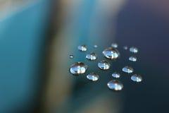 Падения росы в голубом настроении Стоковые Изображения