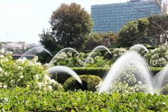 Падения садовничают в озере Eur, Риме Стоковая Фотография RF