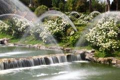 Падения садовничают в озере Eur, Риме Стоковое Фото