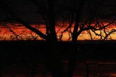 Падения темноты Стоковая Фотография RF