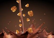 Падения шоколада грецкого ореха Стоковое фото RF