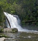 Падения Abrams, большой национальный парк закоптелых гор Стоковые Изображения