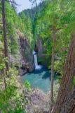 Падения byway-Toketee леса-Roge-UmpquaScenic Орегона-Umpqua национальные Это пейзаж художественной открытки стоковые фото